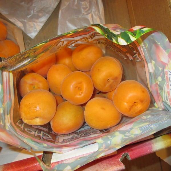 Monstercot Apricots