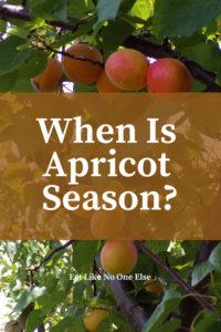 When is Apricot Season