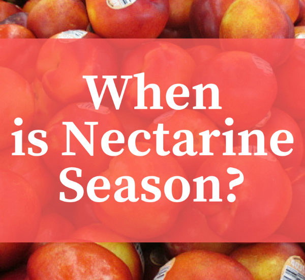 When Does Nectarine Season Begin and End When are Nectarines in Season