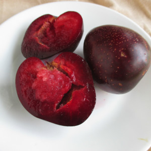 Eagle Egg Pluot
