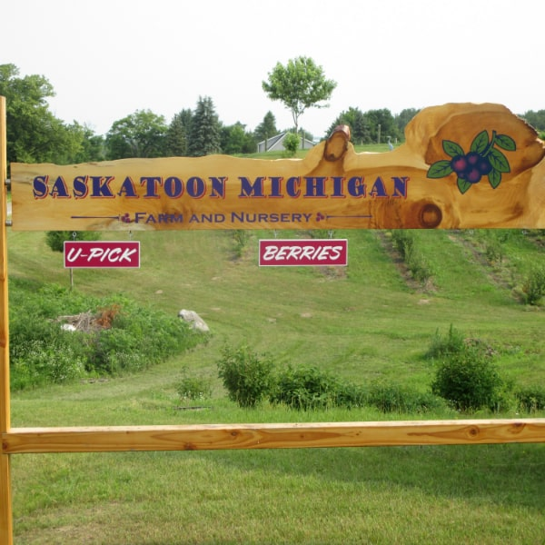 Saskatoon Michigan Berry Farm Sign