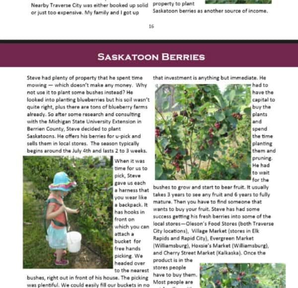 FOTL Sample Page 2