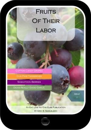 FOTL Tablet Image