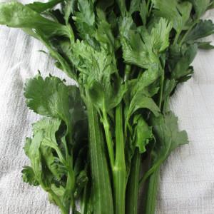 Farmer's Market Celery