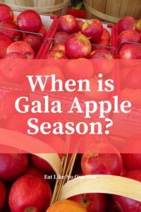 When are Gala Apples in Season?