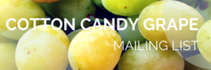 Cotton Candy Grape Mailing List