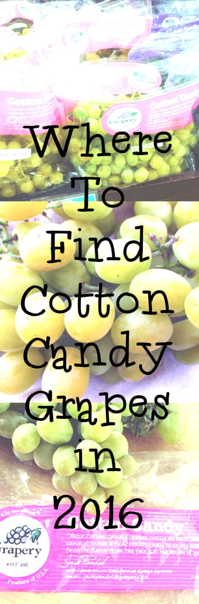 Where to Buy Cotton Candy Grapes 2016