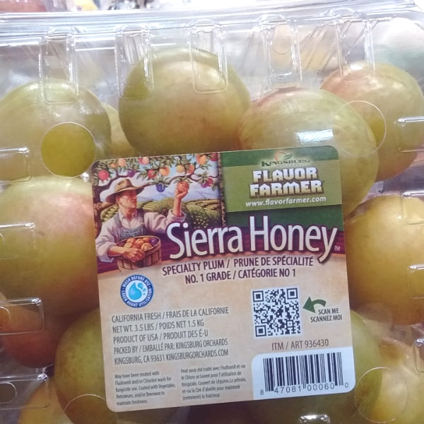 sierra-honey-pluots