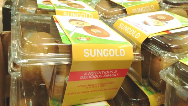 Sungold Kiwis rock!