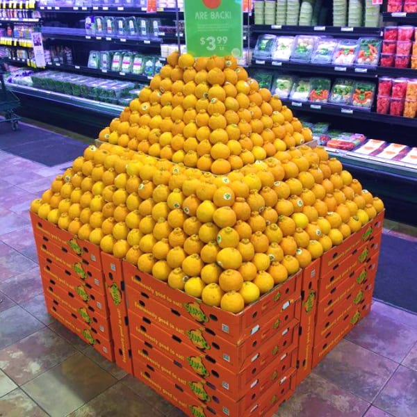 Sumo Citrus arranged in a pyramid on top of Sumo citrus boxes at a Whole Foods Market store
