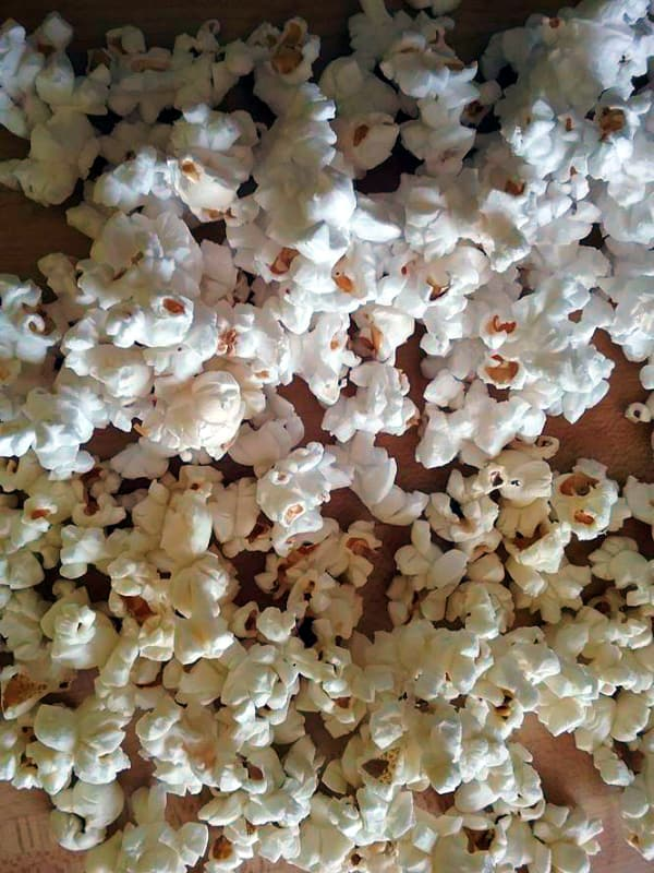 Popped white popcorn on top with popped yellow popcorn on the bottom. You can see that the white popcorn is snow white in color while the yellow popcorn is more off white.