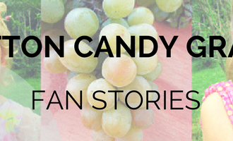 Share your best Cotton Candy grape story with the world.