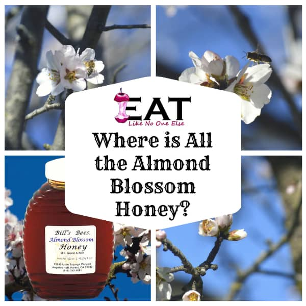 Where to Find Almond Blossom Honey