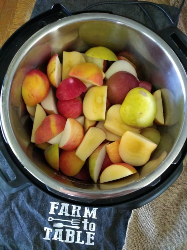 Slice apples with the skin on inside an Instant Pot.