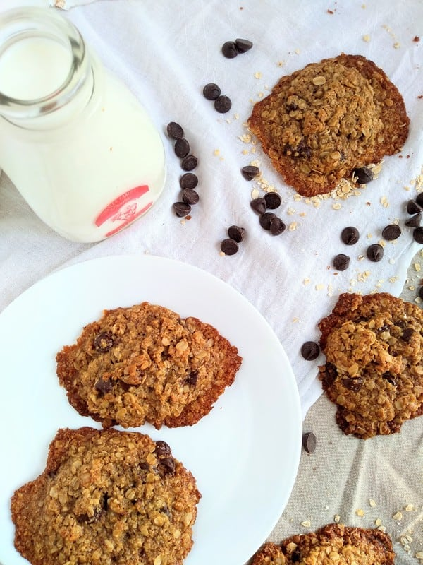 Alton Brown's Oatmeal cookies with chocolate chips sitting on a white plate next to a small glass container of milk