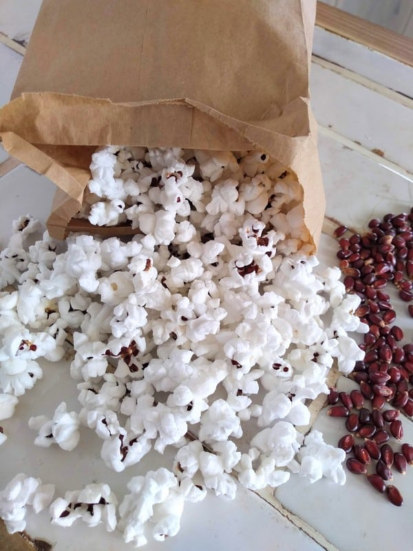Popcorn spilling out of a brown paper lunch bag with red kernels next to it.