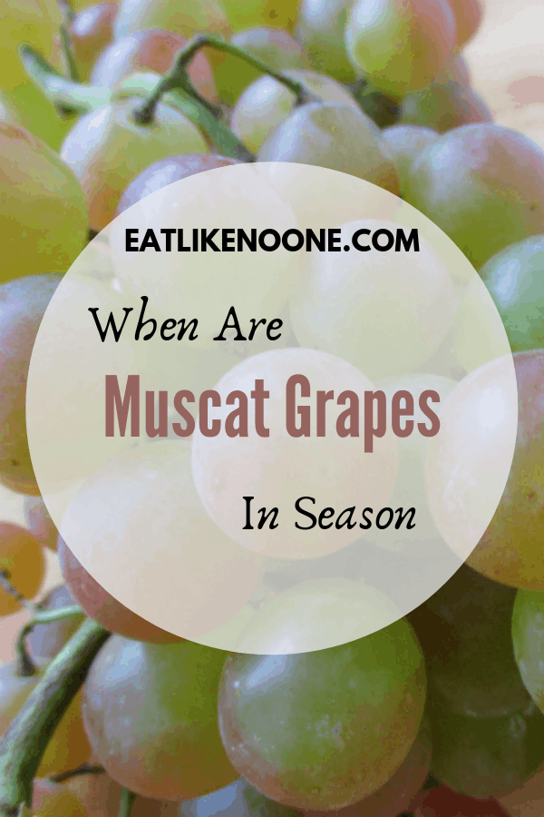 When are Muscat Grapes in Season?