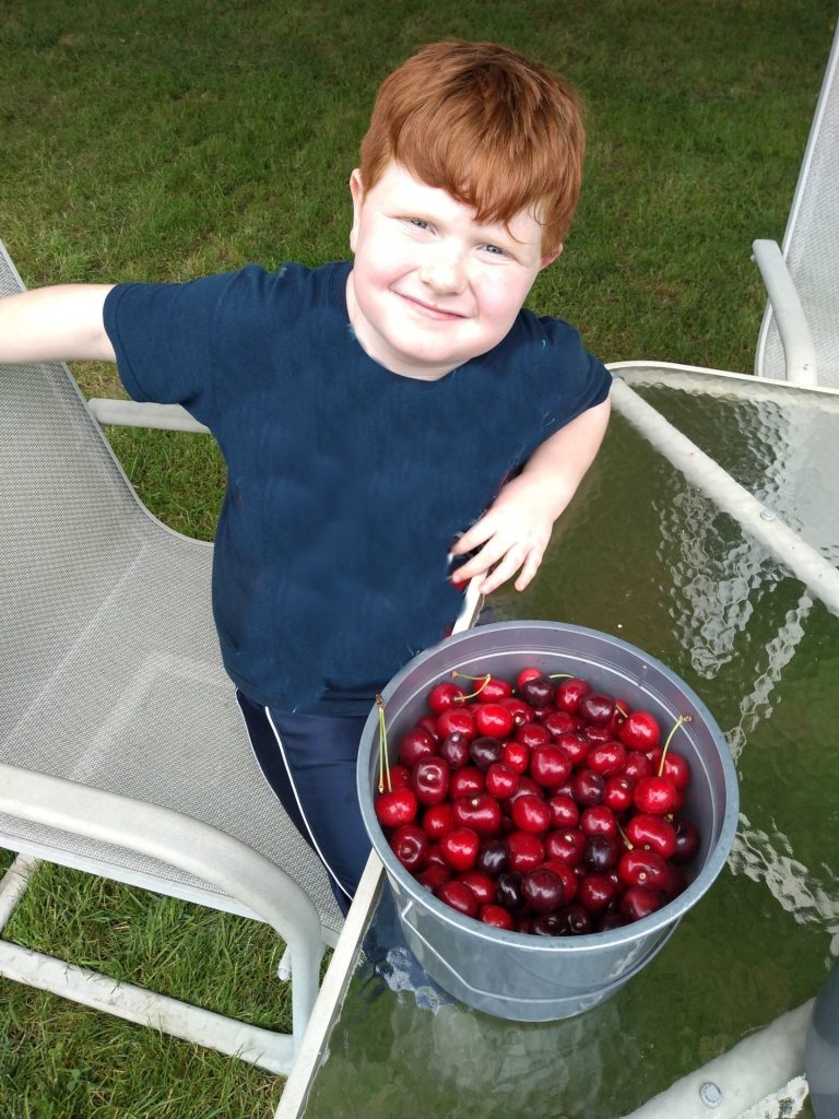 My red headed son standing at a glass table with a gray bucket of u-pick cherries.