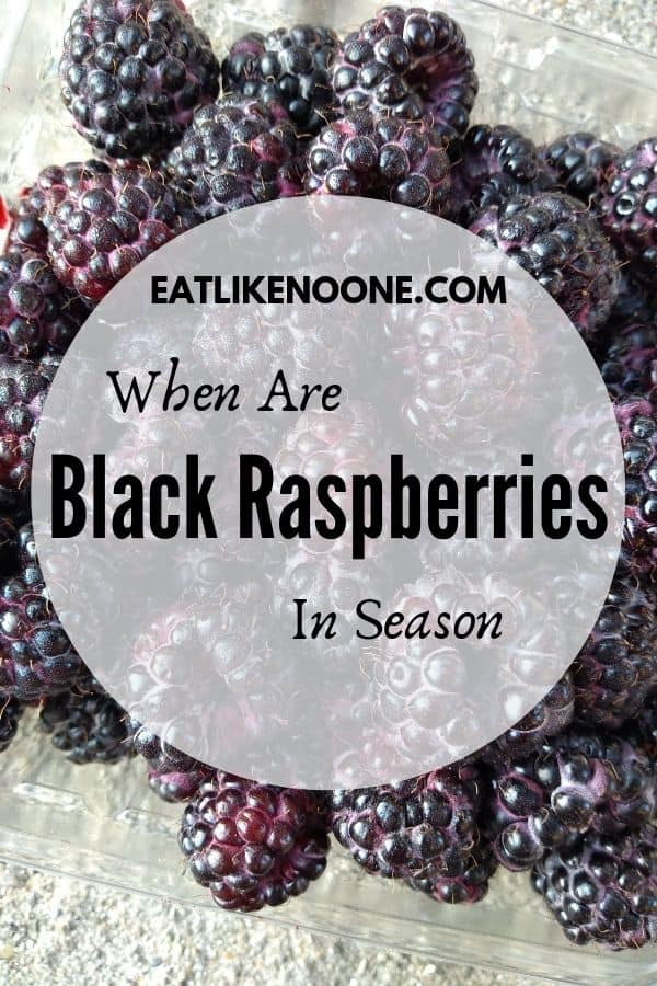 When are Black Raspberries in Season?