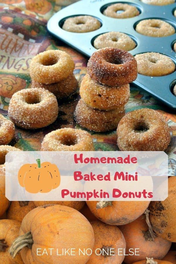Homemade Mini Pumpkin Baked Cake Donuts