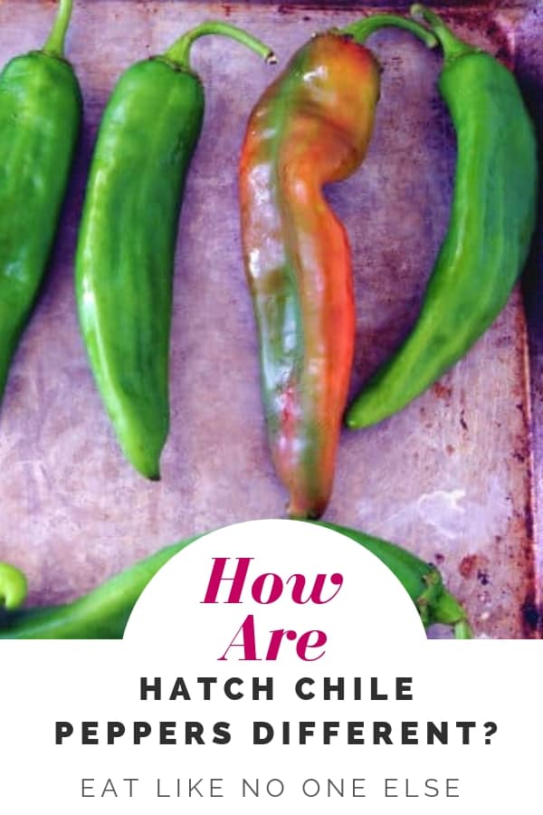 How are Hatch Chile Peppers Different?