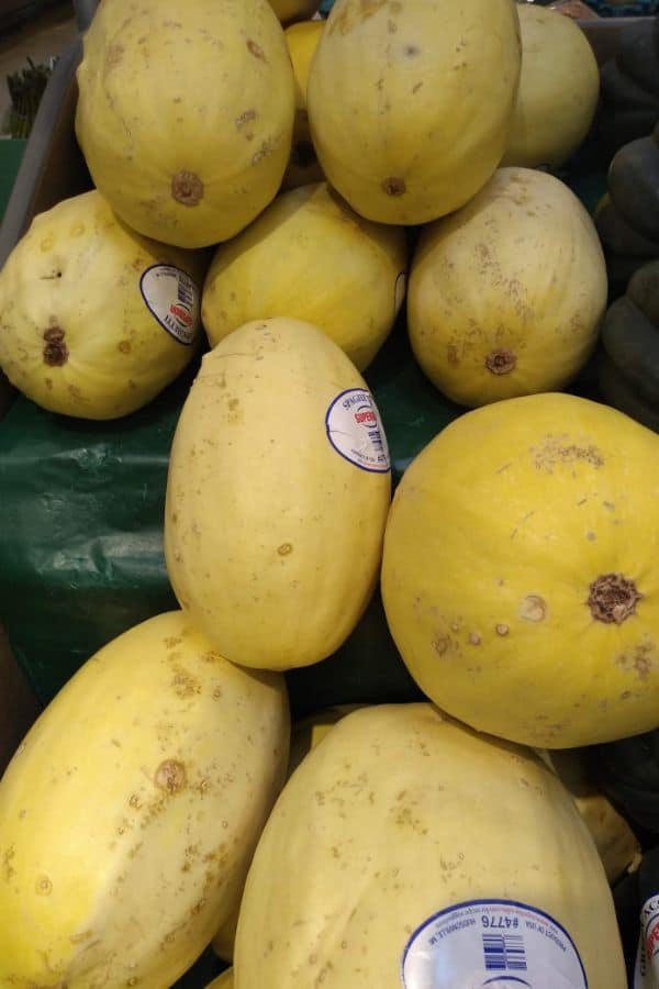 Spaghetti Squash display at the grocery store