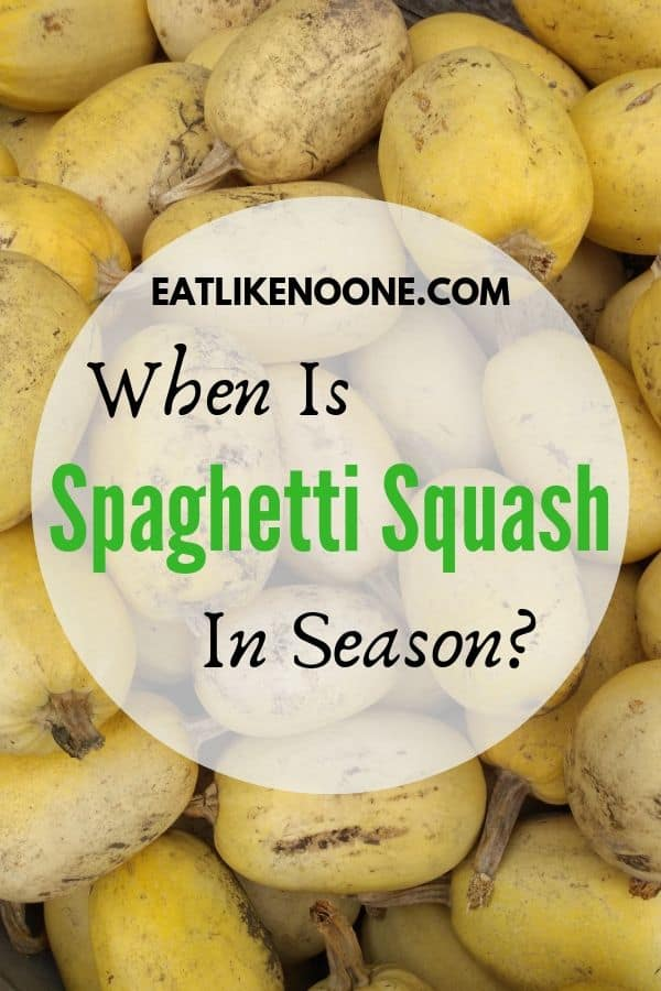 When is Spaghetti Squash in Season?
