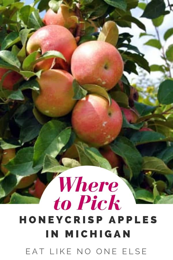 Where to Pick Honeycrisp Apples in Michigan Near Me