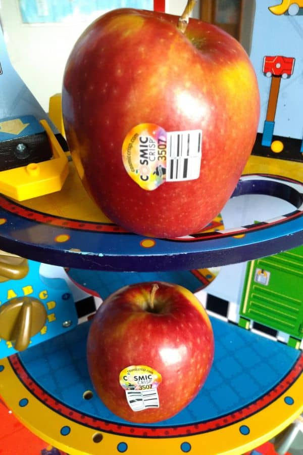 Cosmic Crisp apples on a space ship toy