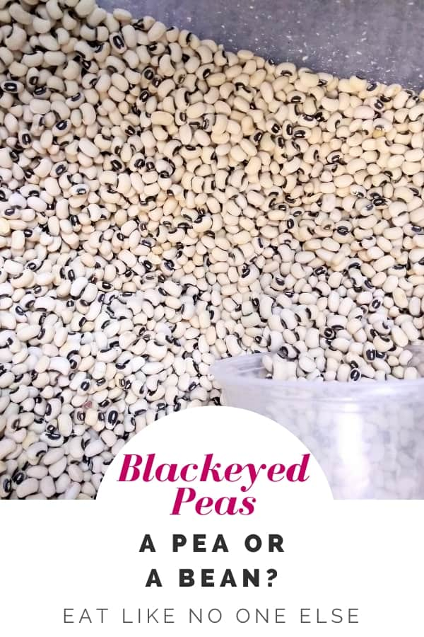 """Black eyed peas in a bin with a plastic container to scoop them. The words """"Blackeyed Peas - a Pea or a Bean"""" appear at the bottom of the image."""