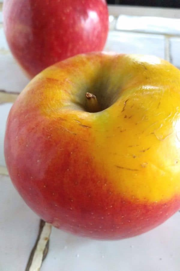 Pazazz apples up close