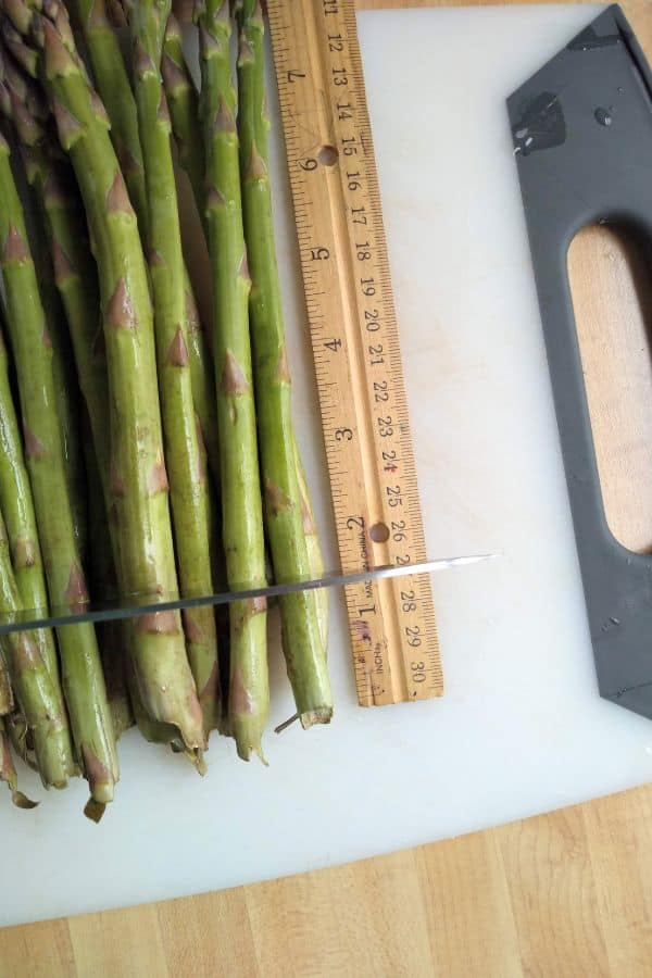 Asparagus being measured with a ruler and cut at 1 1/2 inches
