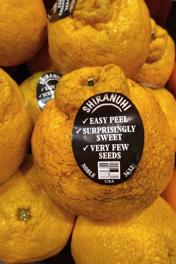 "Dekopan citrus was a sticker on them that says ""Shiranuhi"" - Easy Peel, surprisingly Sweet, very few seeds"