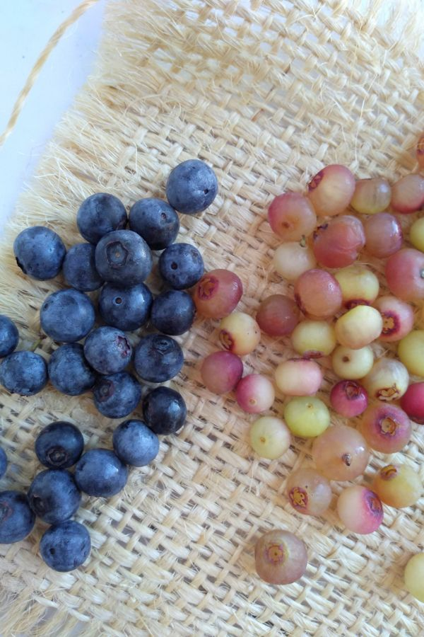 Pink Lemonade Blueberries and regular blueberries side by side