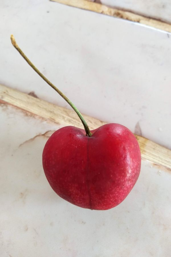 A single Sonnet cherry sitting on a white title counter top