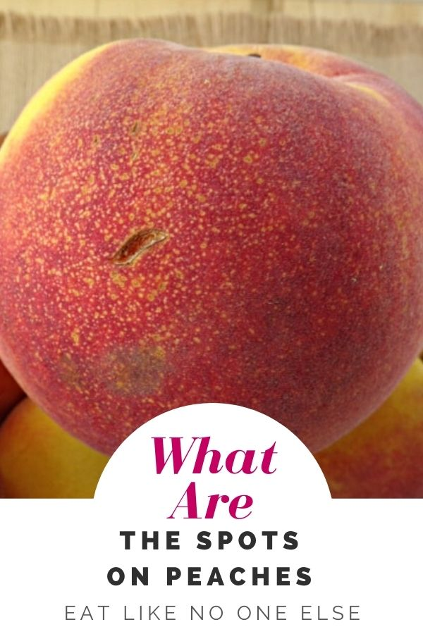 """A close up of a peach with tons of small sugar spots near the bottom of the red blushed fruit. At the bottom the words """"What are the spots on peaches?"""""""