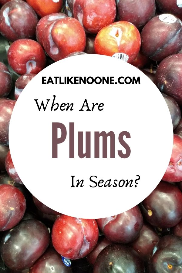 """The words """"When are Plums in Season? are pictured in a white circle over top a plile of black plums"""