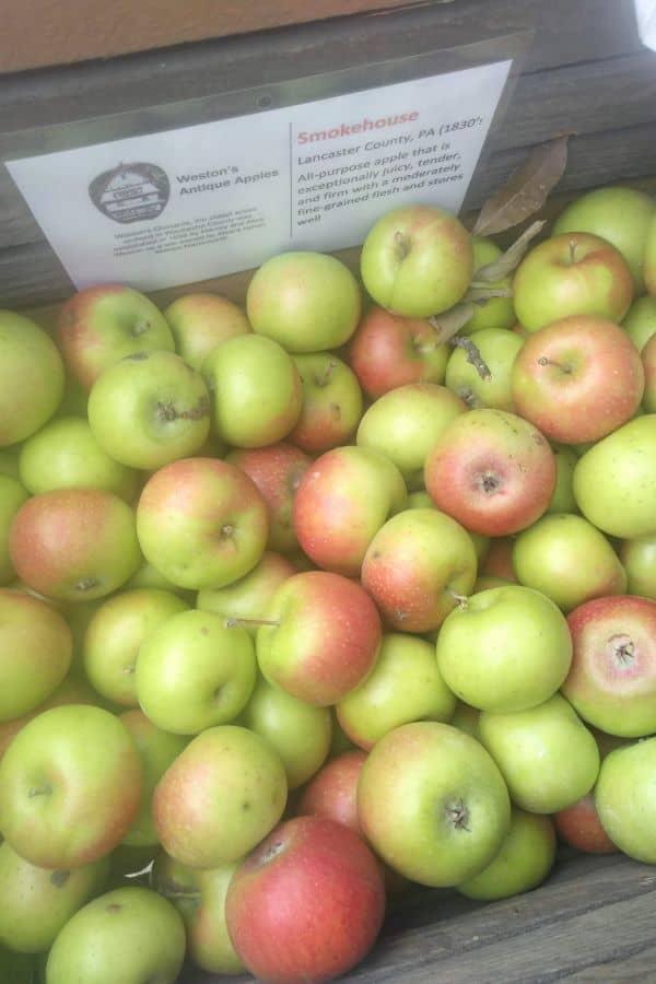 A wood bin of Smokehouse apples
