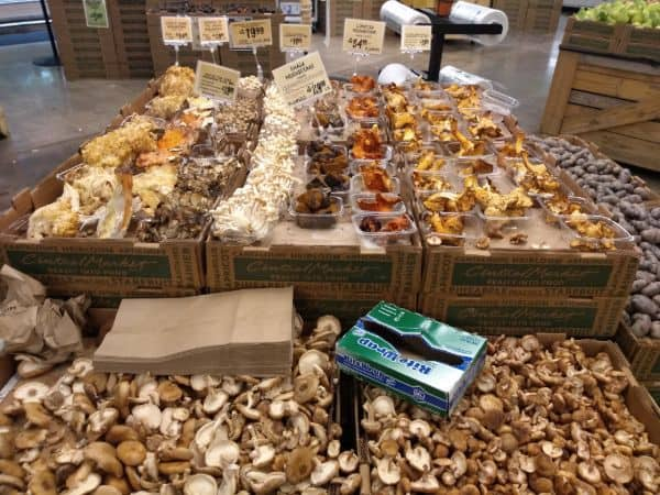 A grocery store display overflowing with different type of mushrooms