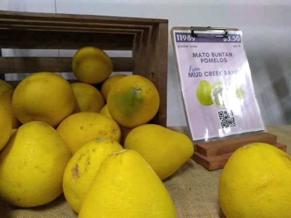 A store display of Mato Buntan Pomelos from Mud Creek Ranch in California.