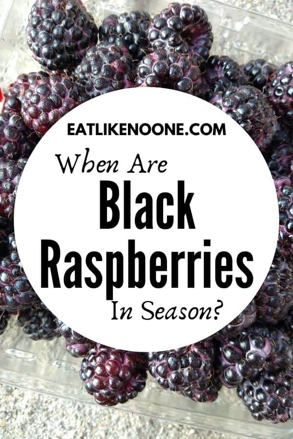 Black raspberries in a clear plastic container on a stone surface with a white circle in front of them with the words inside that circle reading When are Black Raspberries in Season?