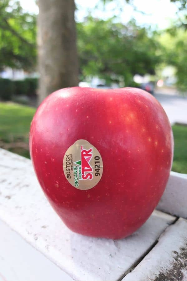A single red Premier Star apple sitting on a white fence post with the background blurred.