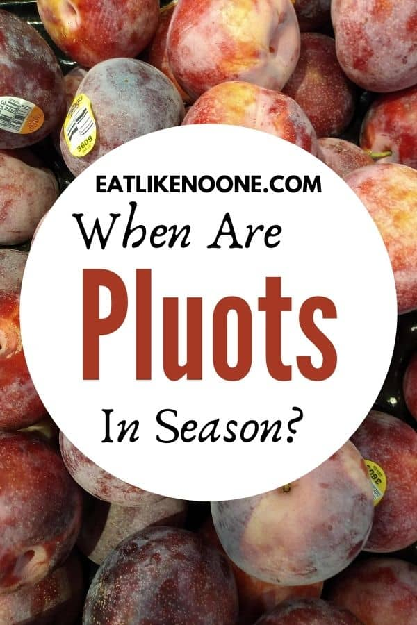 """Purple and reddish colored pluots with a white circle in front of them that says """"when are pluots in season?"""""""
