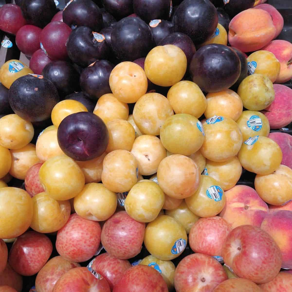 A grocery store display of different colored pluots ranging from black at the top to yellow in the middle to mottled pink on the bottom.