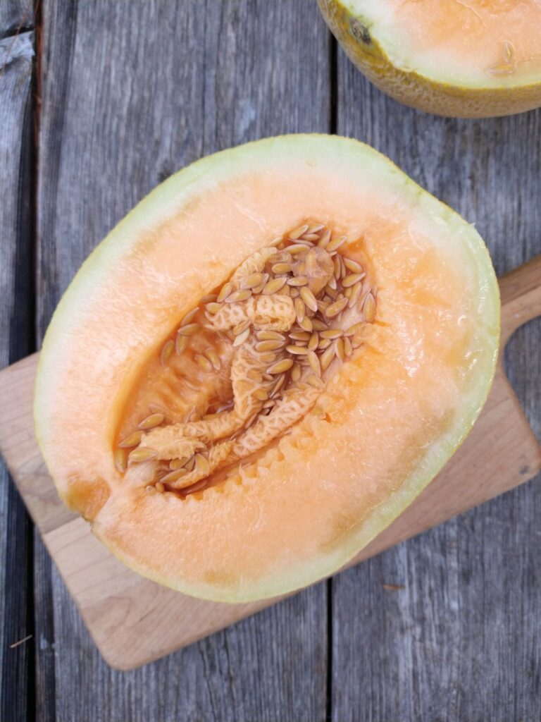 A cut open Sugar Kiss melon showing the seeds in the middle and the orange colored inferior. The melon is sitting on a wood cutting board on top of a wood picnic table.