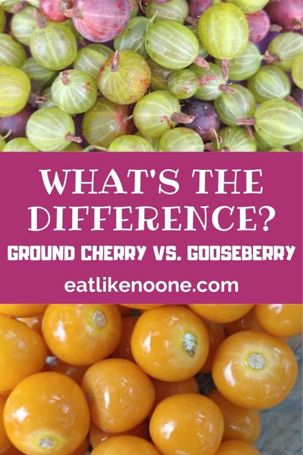 """A collage with green and red gooseberries on top and ground cherries on the bottom with the words """"What's the Difference Ground Cherry vs. Gooseberry"""" in the middle."""