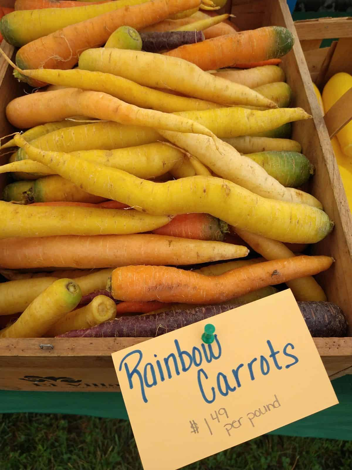 """A wood box of carrots of different shades of yellow and orange as well purple at a farmer's market. A sign attached to the box says """"Rainbow carrots $1.49 per pound"""""""