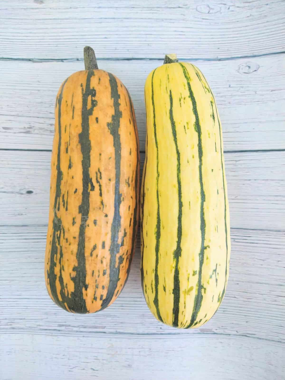 A Honey Boat Delicata Squash next to a traditional yellow Delicata squash on a white wooden background.